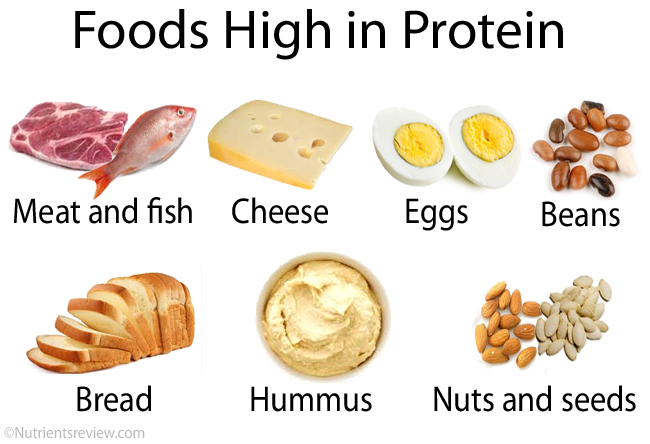 high-protein-food examples - hormones, health, & fitness